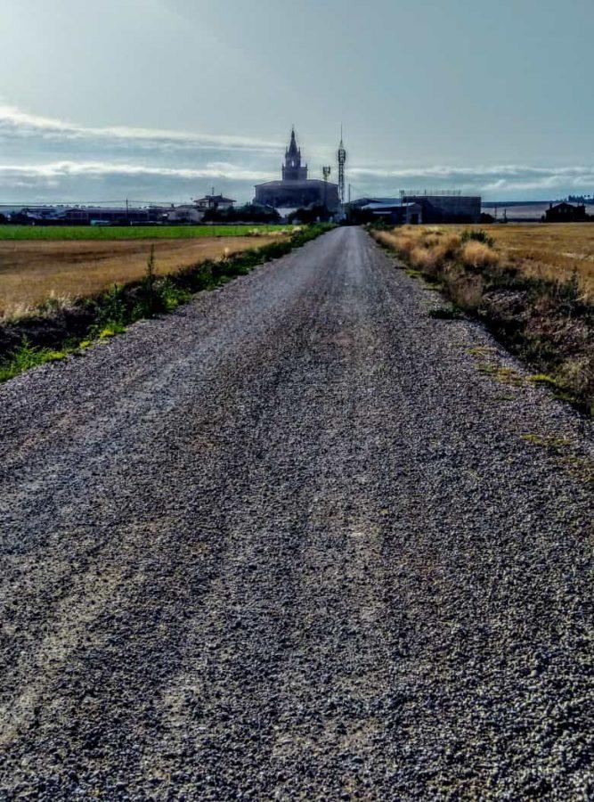 Caminando entre viñedos hasta Zarratón 15