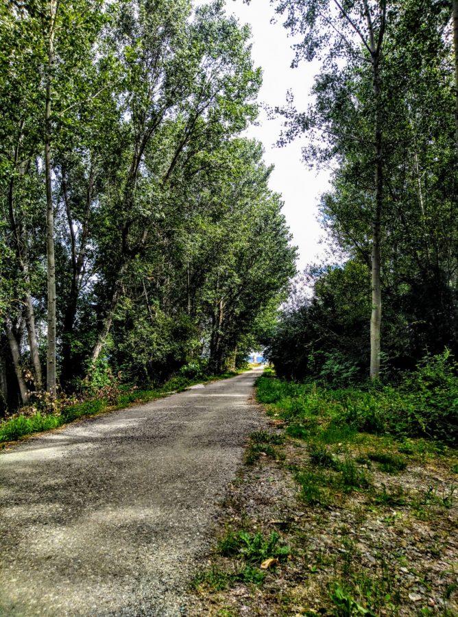 Caminos abiertos en La Rioja Alta 4