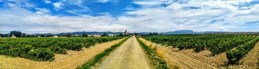 Caminos abiertos en La Rioja Alta 8