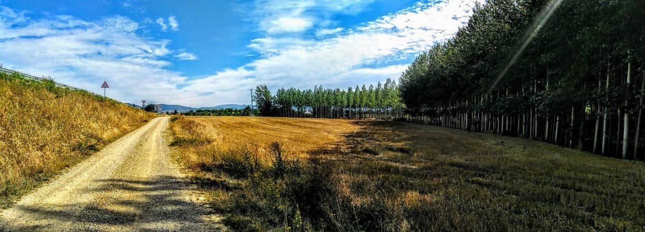 Caminos abiertos en La Rioja Alta 1