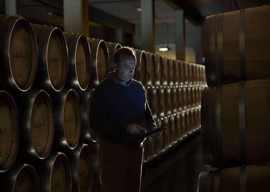 Una cosecha para grandes vinos 4