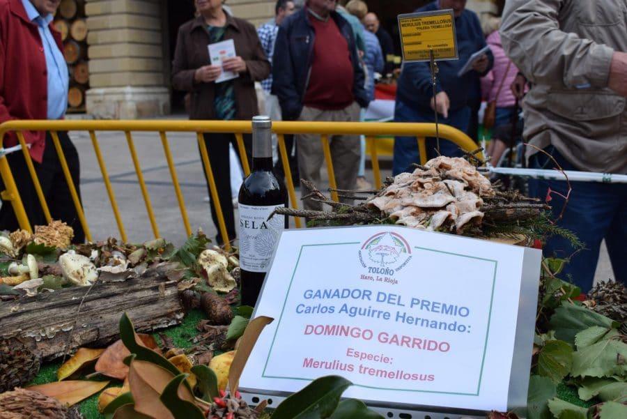 Domingo Garrido, Premio Carlos Aguirre de las Jornadas Micológicas Jarreras 8