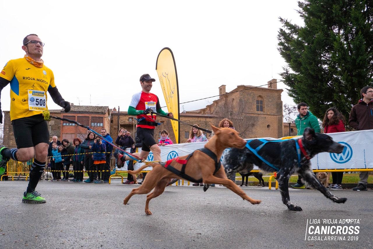 Más de 140 corredores participarán este domingo en el Canicross de Casalarreina 1