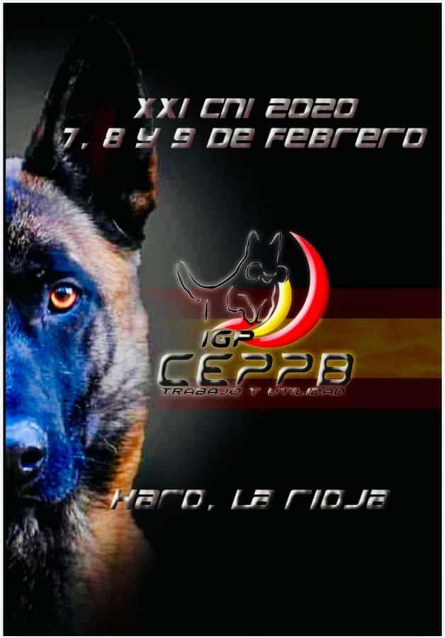Haro acoge este fin de semana el Campeonato de España de Adiestramiento de Perros 2