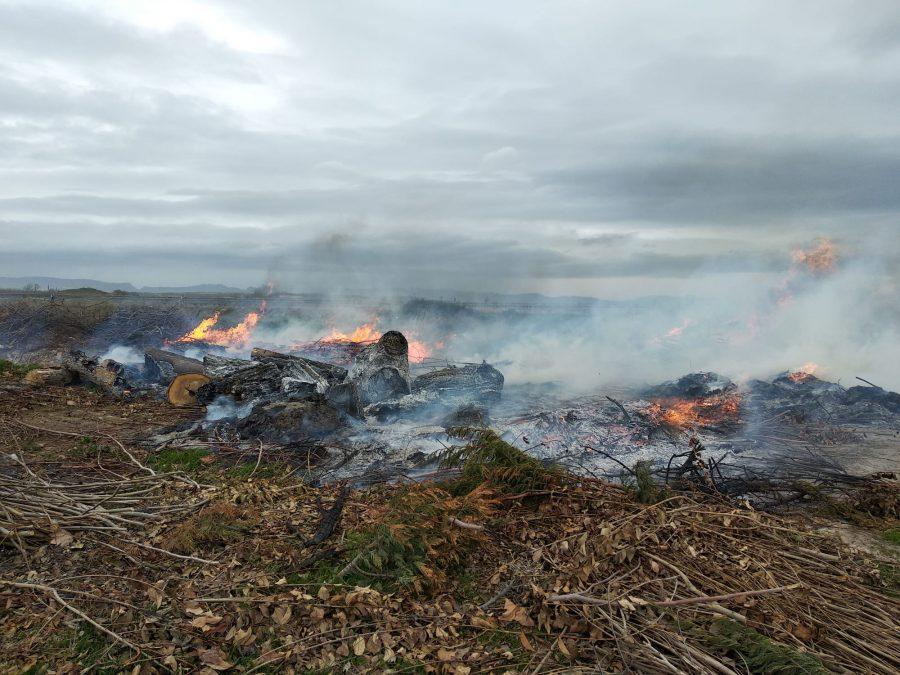 Incendio en una escombrera en Santo Domingo 2