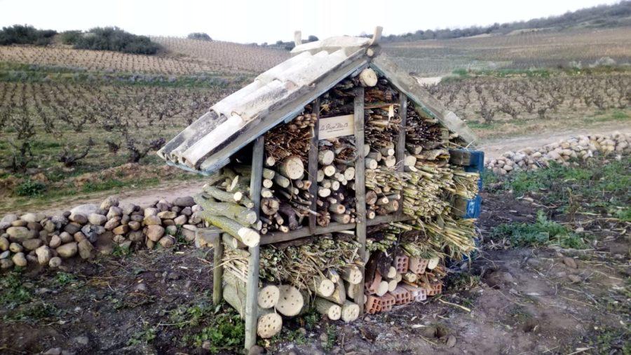 La Rioja Alta, SA inicia la instalación de albergues de microfauna beneficiosa para sus viñedos 2