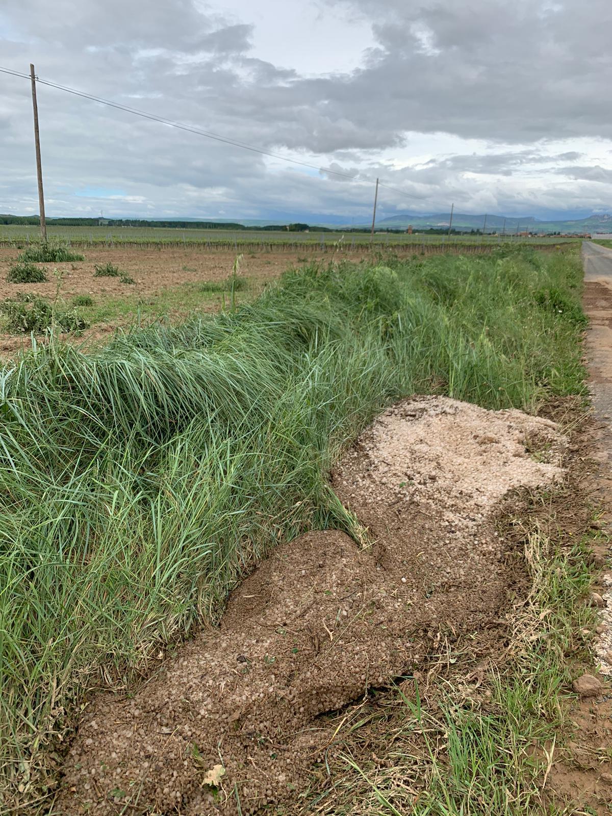 Una fuerte tormenta de agua y granizo deja daños en la comarca de Haro 3