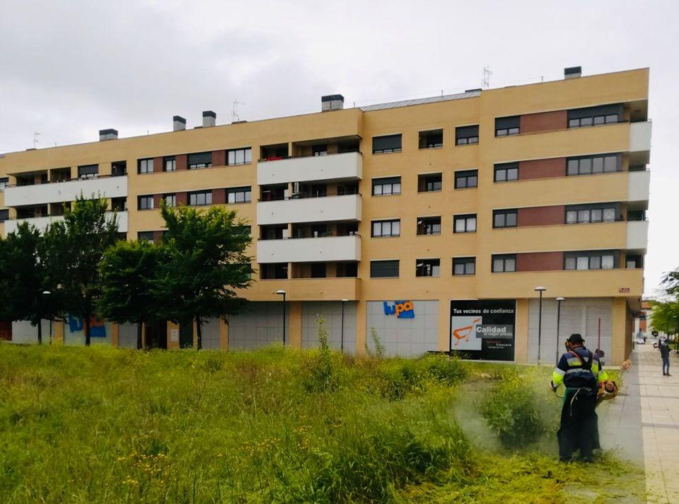 La Brigada de Obras de Haro desarrolla labores en varios puntos de la ciudad 3