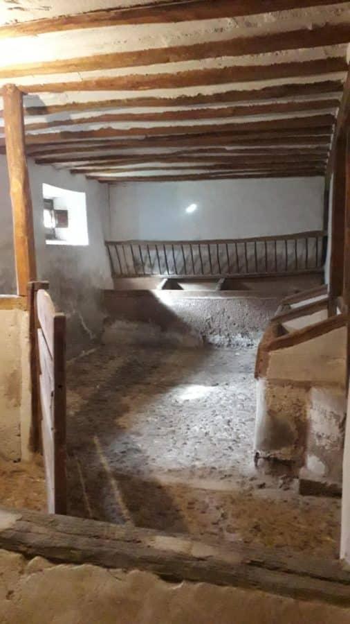 EspacioArteVACA, cultura contra la despoblación en Viniegra de Abajo 10