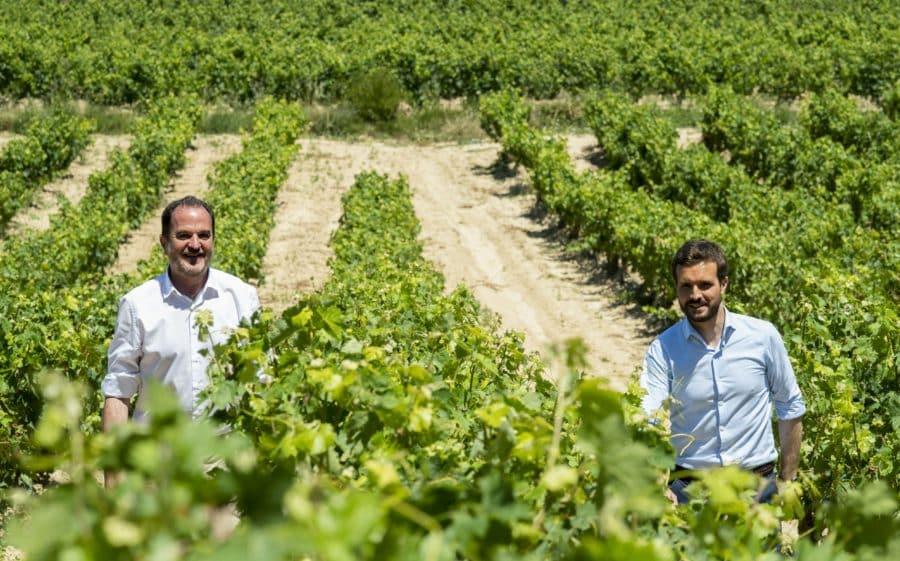 Casado visita Labastida y pide a Sánchez que negocie con EEUU los aranceles del vino 3