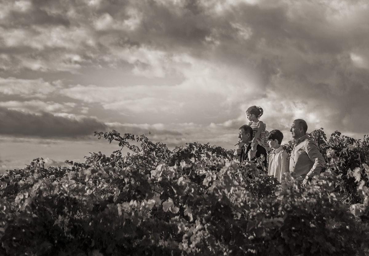 Bodegas Dominio de Berzal presenta uno de los primeros vinos de 'Viñedo Singular' de Rioja 1