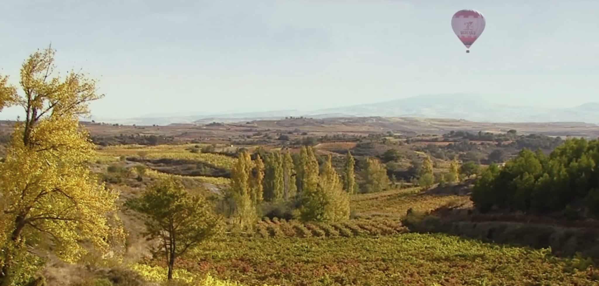 VÍDEO: 'Te Mereces un Rioja', la campaña para impulsar la hostelería y el enoturismo 1