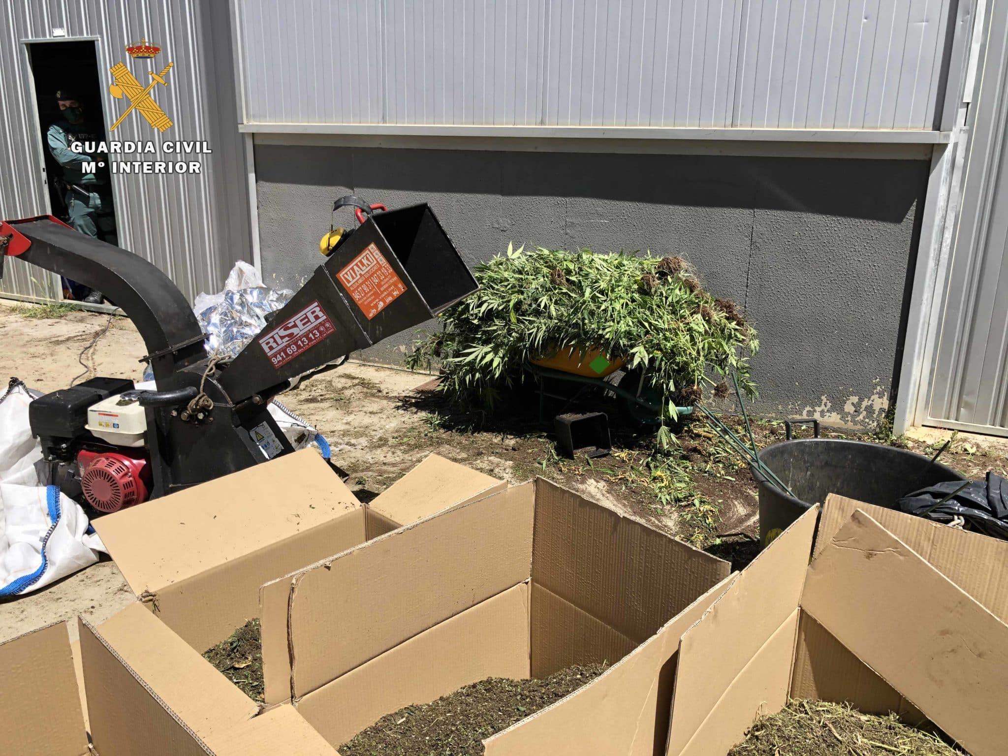 Operación 'Apostaxi': Desmantelada una organización delictiva que elaboraba y distribuía marihuana en La Rioja y Euskadi 12