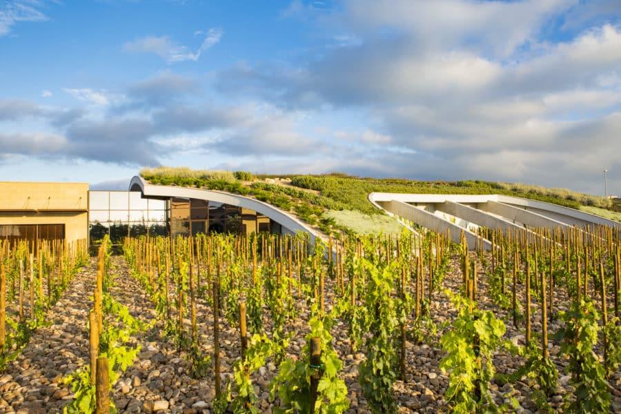 La Rioja Alta y Ramón Bilbao, entre las marcas de vino más admiradas del mundo 1