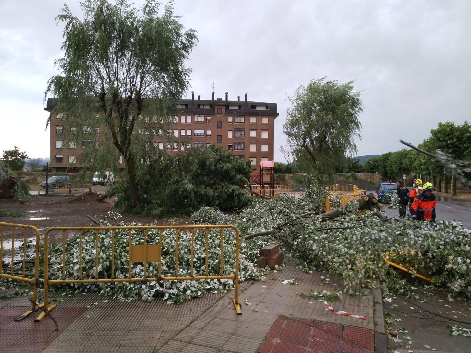 VÍDEO: Las lluvias y tormentas provocan varios destrozos en Santo Domingo de la Calzada 3