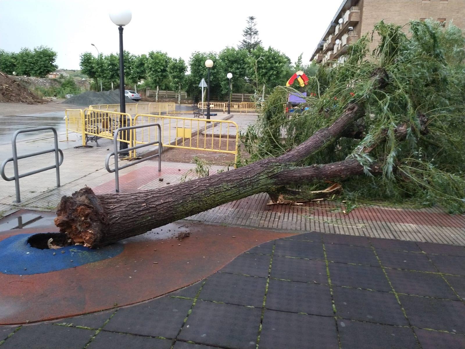 VÍDEO: Las lluvias y tormentas provocan varios destrozos en Santo Domingo de la Calzada 5