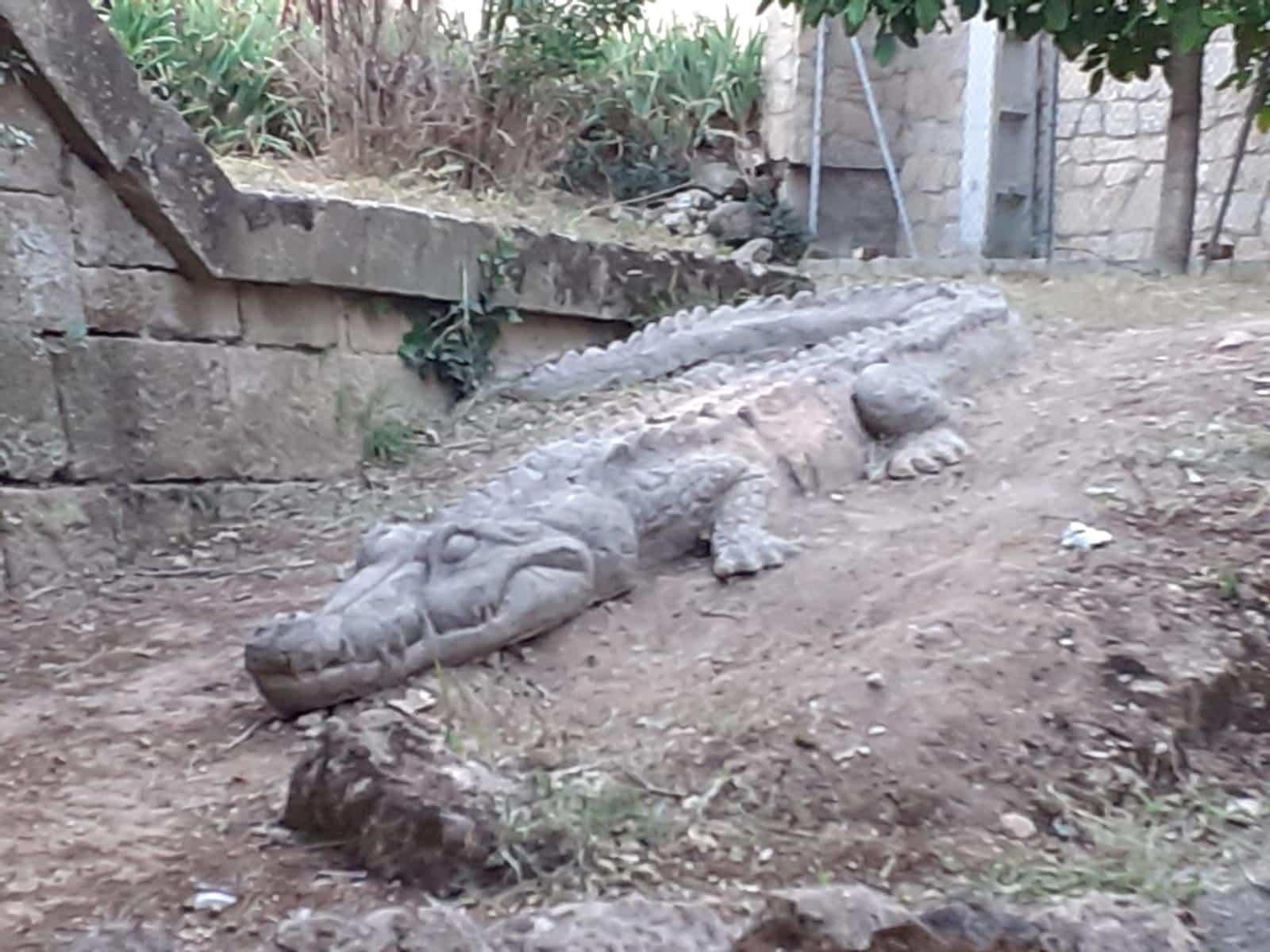 El cocodrilo del Mardancho regresa a Sajazarra 4