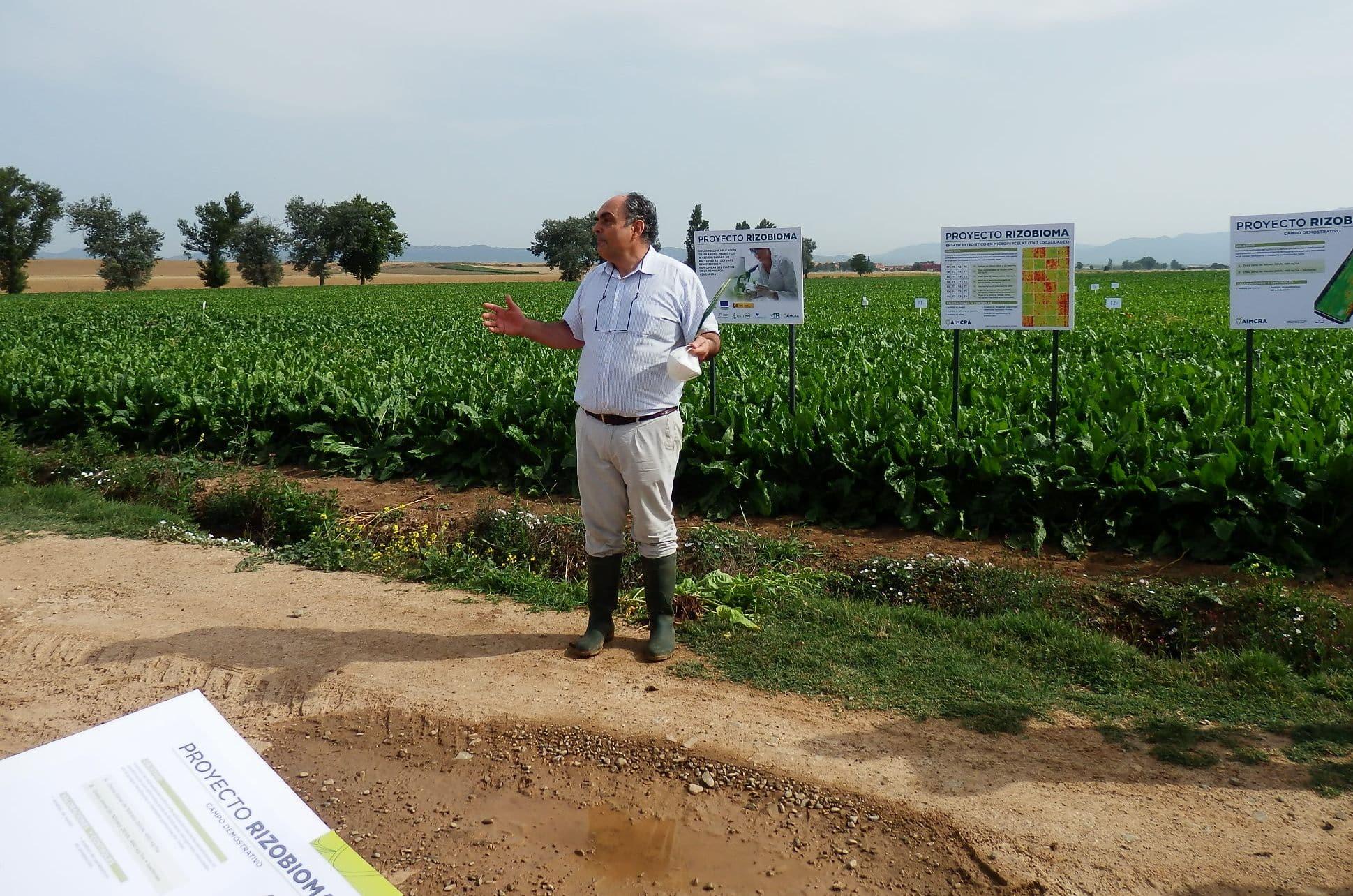ARAG-ASAJA presenta en Casalarreina a los remolacheros riojanos los resultados del proyecto 'Rizobioma' 2
