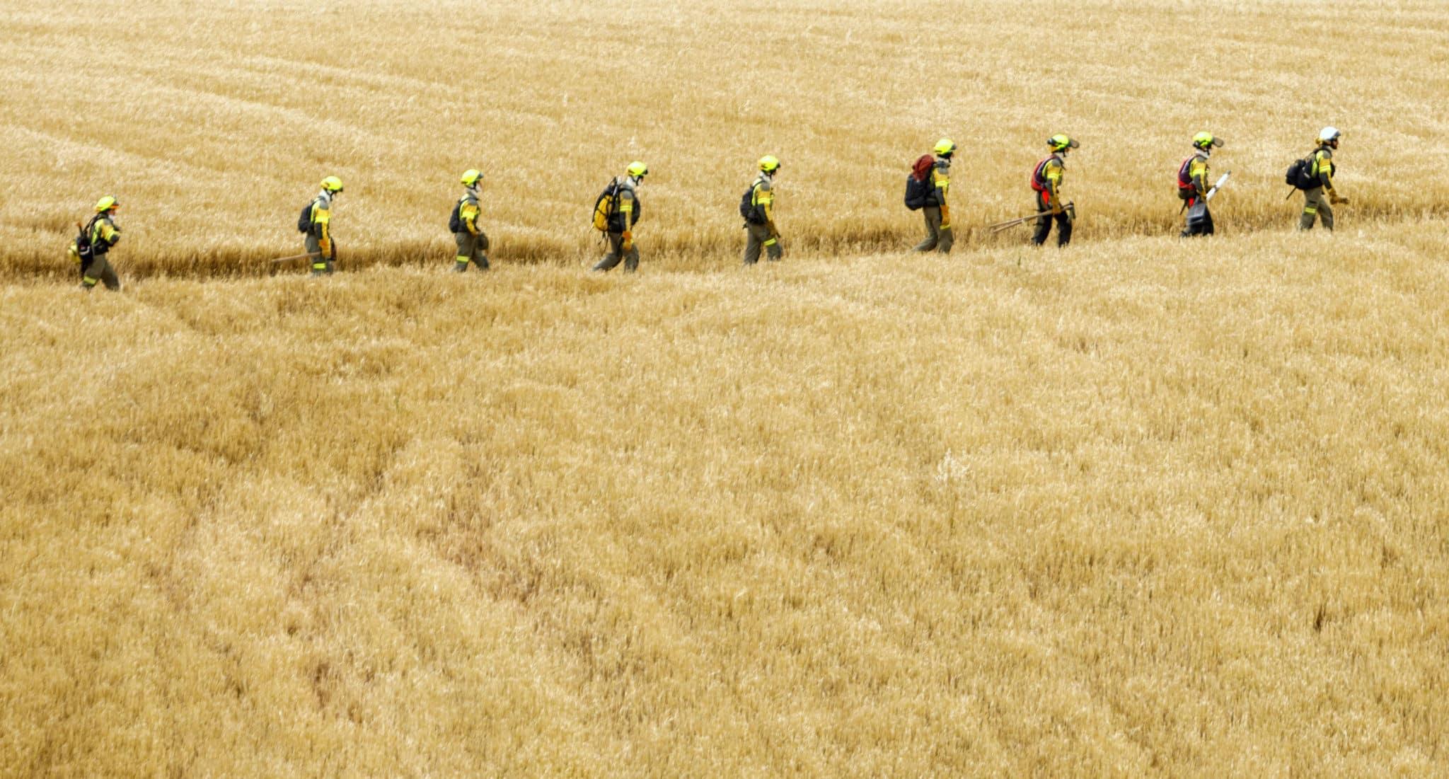 La Rioja contra los incendios forestales: más de 300 profesionales y casi 8,5 millones de presupuesto 4