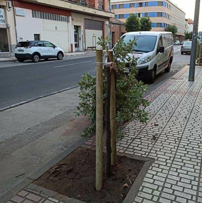 Actos vandálicos en Santo Domingo de la Calzada 1