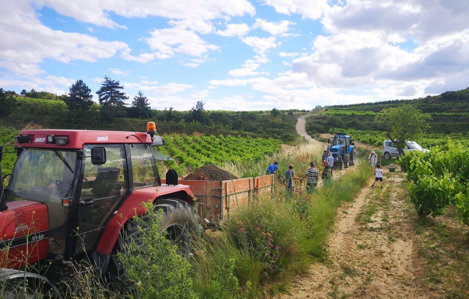 Villalba de Rioja acomete importantes obras de reparación de fugas de agua y mejoras de iluminación 3