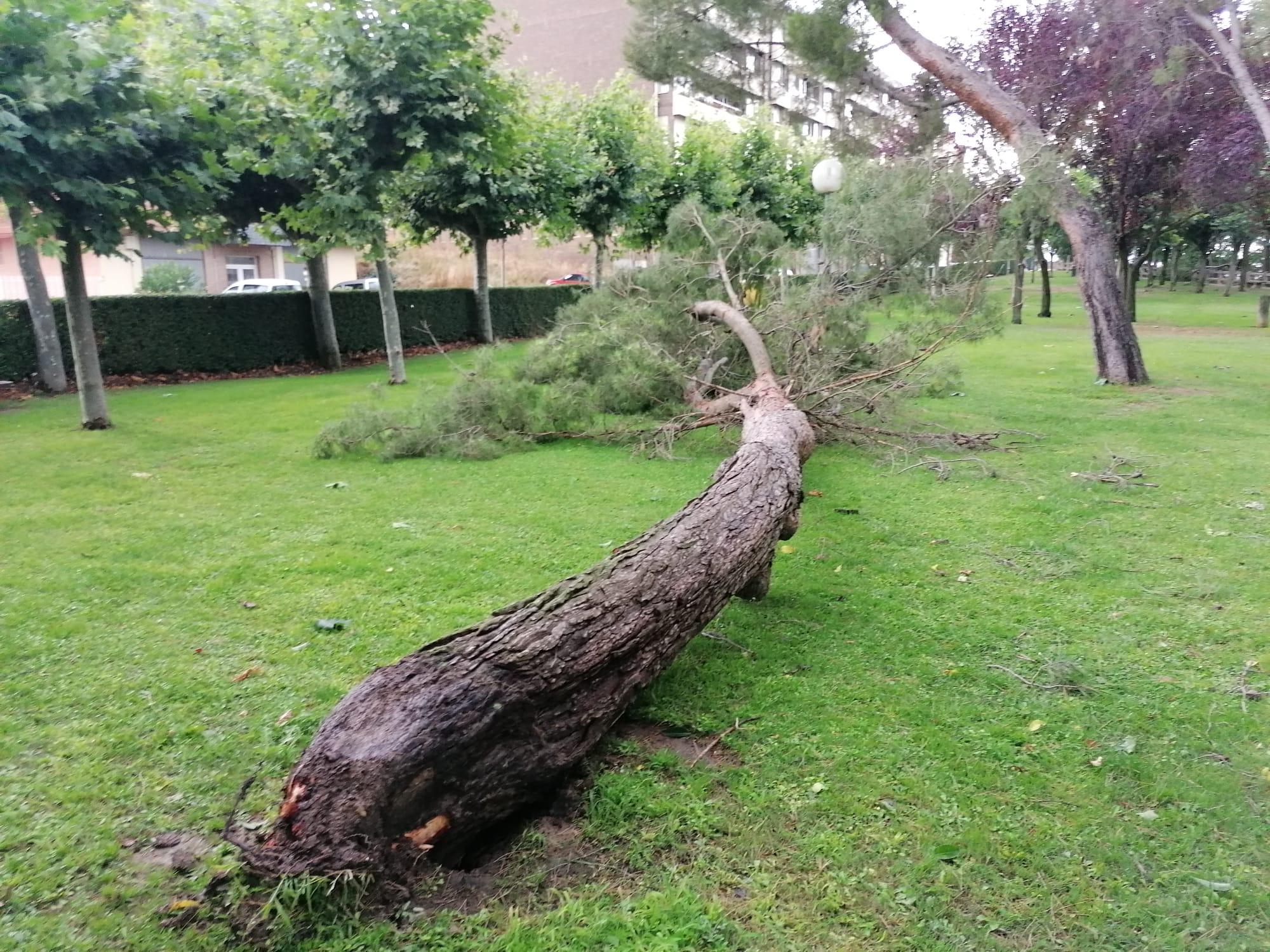 Una aparatosa tormenta deja varios destrozos en Haro 7