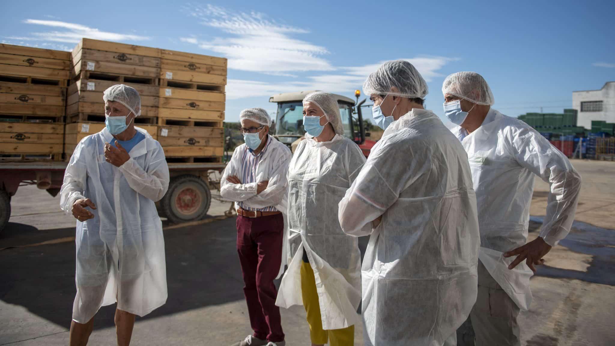 La Rioja detecta dos positivos entre las 300 pruebas PCR realizadas a temporeros 2