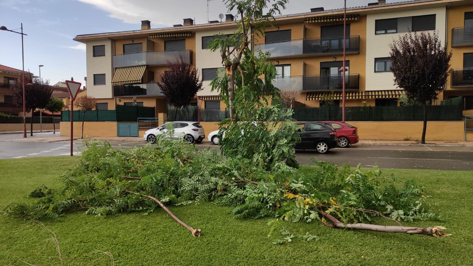 Una aparatosa tormenta deja varios destrozos en Haro 1