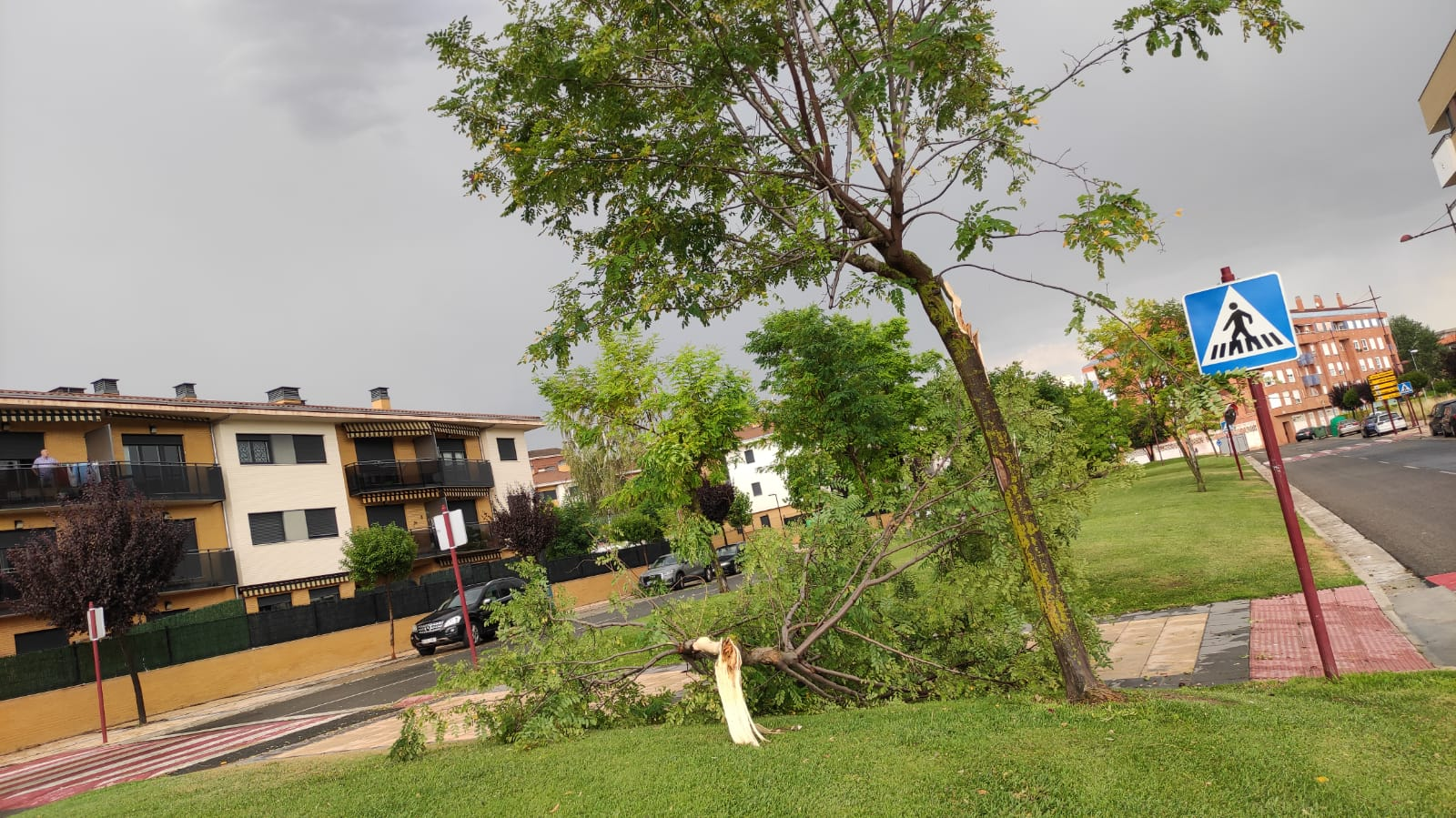 Una aparatosa tormenta deja varios destrozos en Haro 3