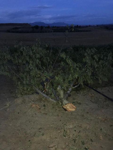 Una fuerte tormenta de granizo hace estragos en La Rioja Alta 4