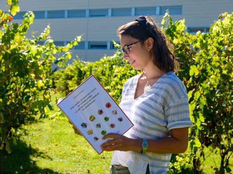 Tesis sobre viticultura sostenible
