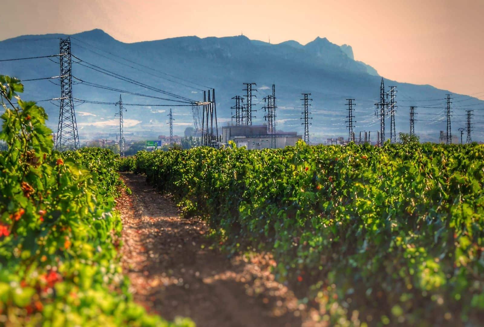 Las obras del tendido eléctrico 'Haro-Norte' se dejan notar en El Viano 1