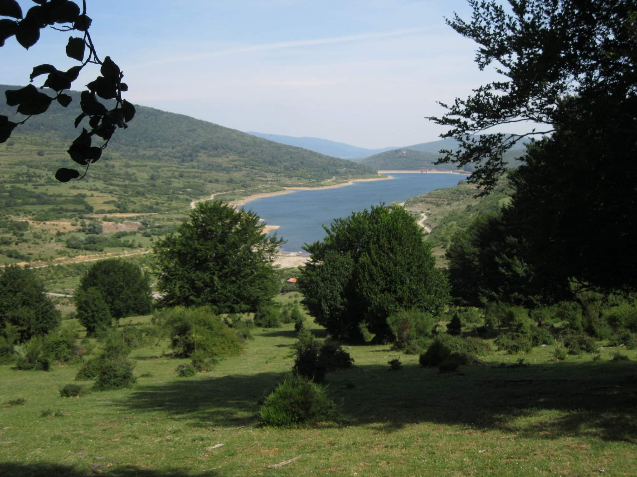 Sierra de Cebollera organiza un paseo guiado por la dehesa de hayas del Astonar para este domingo 11 de octubre 1