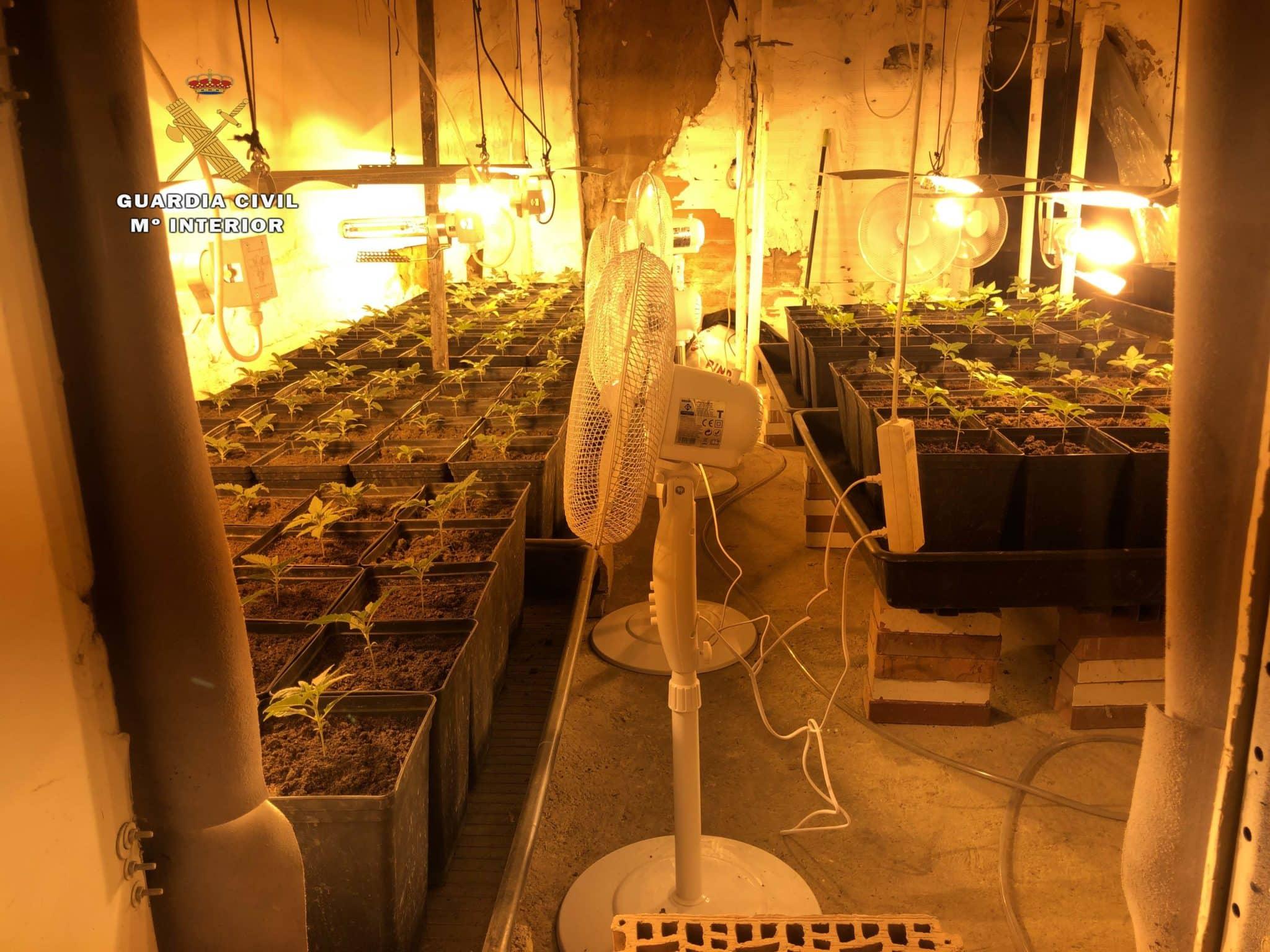 Desmantelado un laboratorio 'indoor' de marihuana en una bodega de Arnedo 2