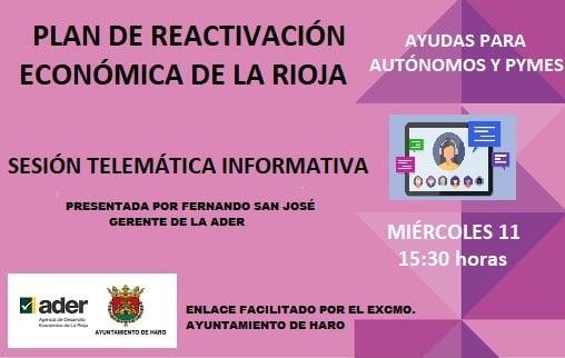 El Ayuntamiento de Haro y la ADER celebran un encuentro virtual sobre el Plan de Reactivación Económica de La Rioja 1