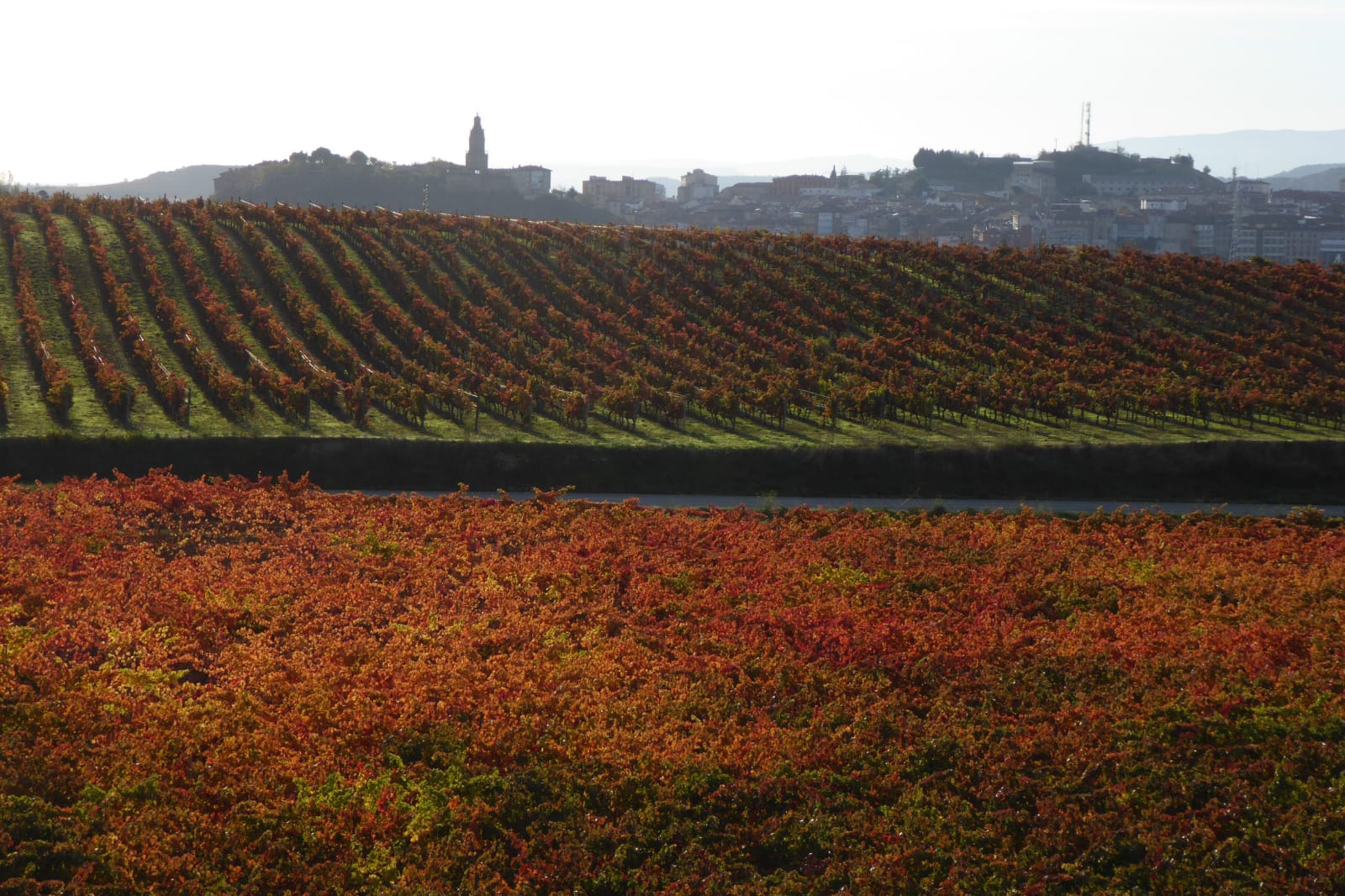 Haro presentará su candidatura para ser sede del proyecto de 'Enorregión' de La Rioja 1
