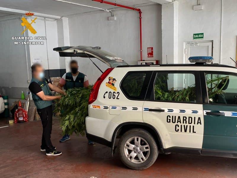 Guardia Civil arrestos marihuana