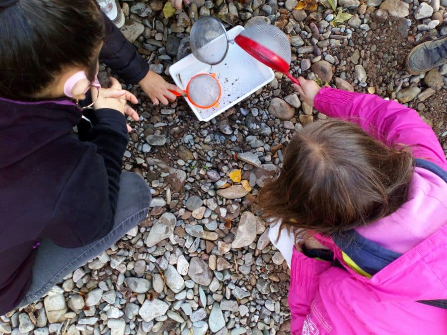Alumnos del IES Rey Don García realizan recorridos de educación ambiental por el Najerilla e Iregua 3