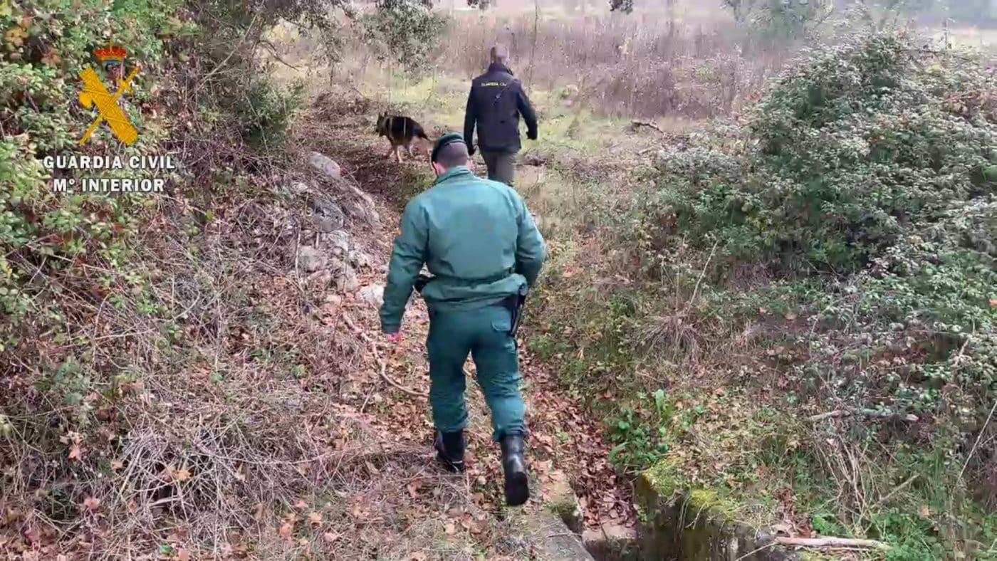 La Guardia Civil en La Rioja aumenta los controles en la búsqueda de cebos envenenados 6