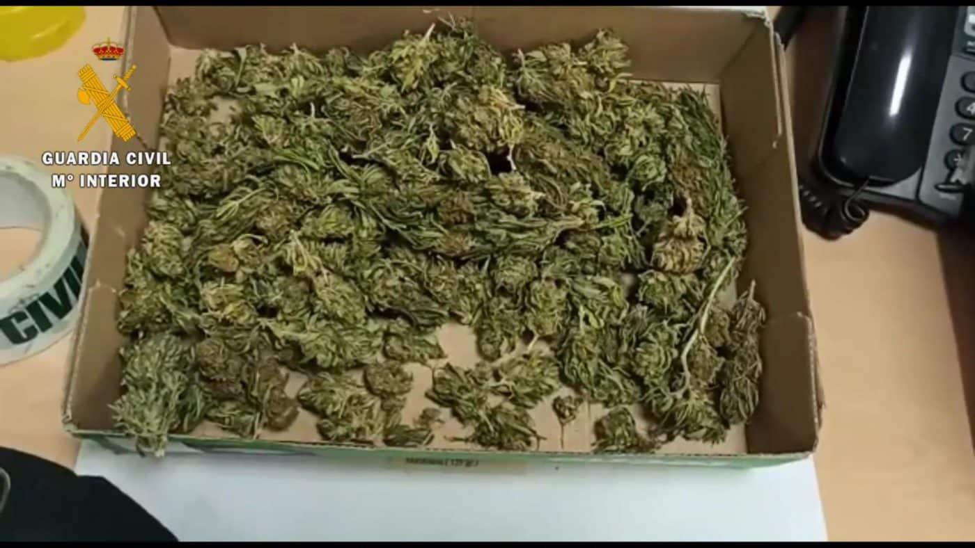 La Guardia Civil intercepta en Pradejón un vehículo con 350 gramos de cogollos de marihuana 1