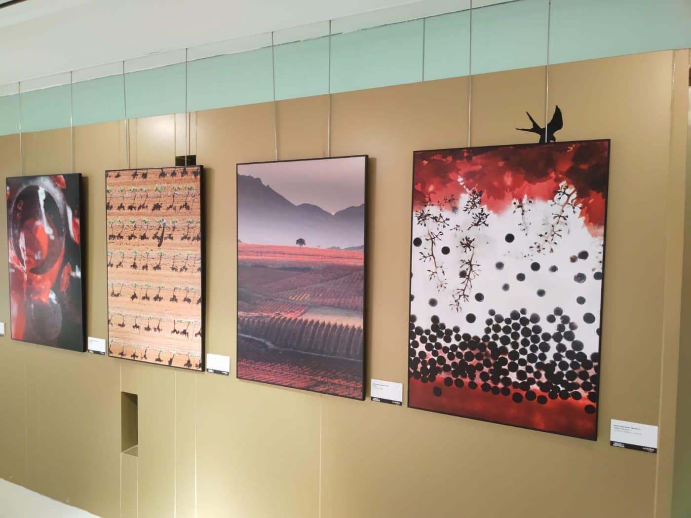 Santo Domingo acoge la exposición de fotografías 'El Rioja y los 5 Sentidos' 2