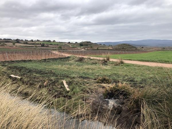 """La laguna de Huércanos """"desaparece"""" bajo escombros y vertidos 2"""