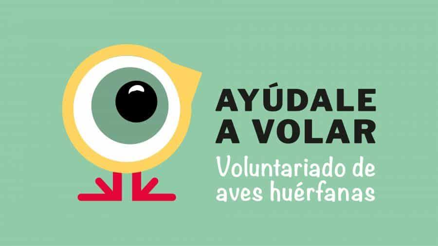 La Rioja pone en marcha 'Ayúdale a volar', un programa de voluntariado para la cría de aves huérfanas 1