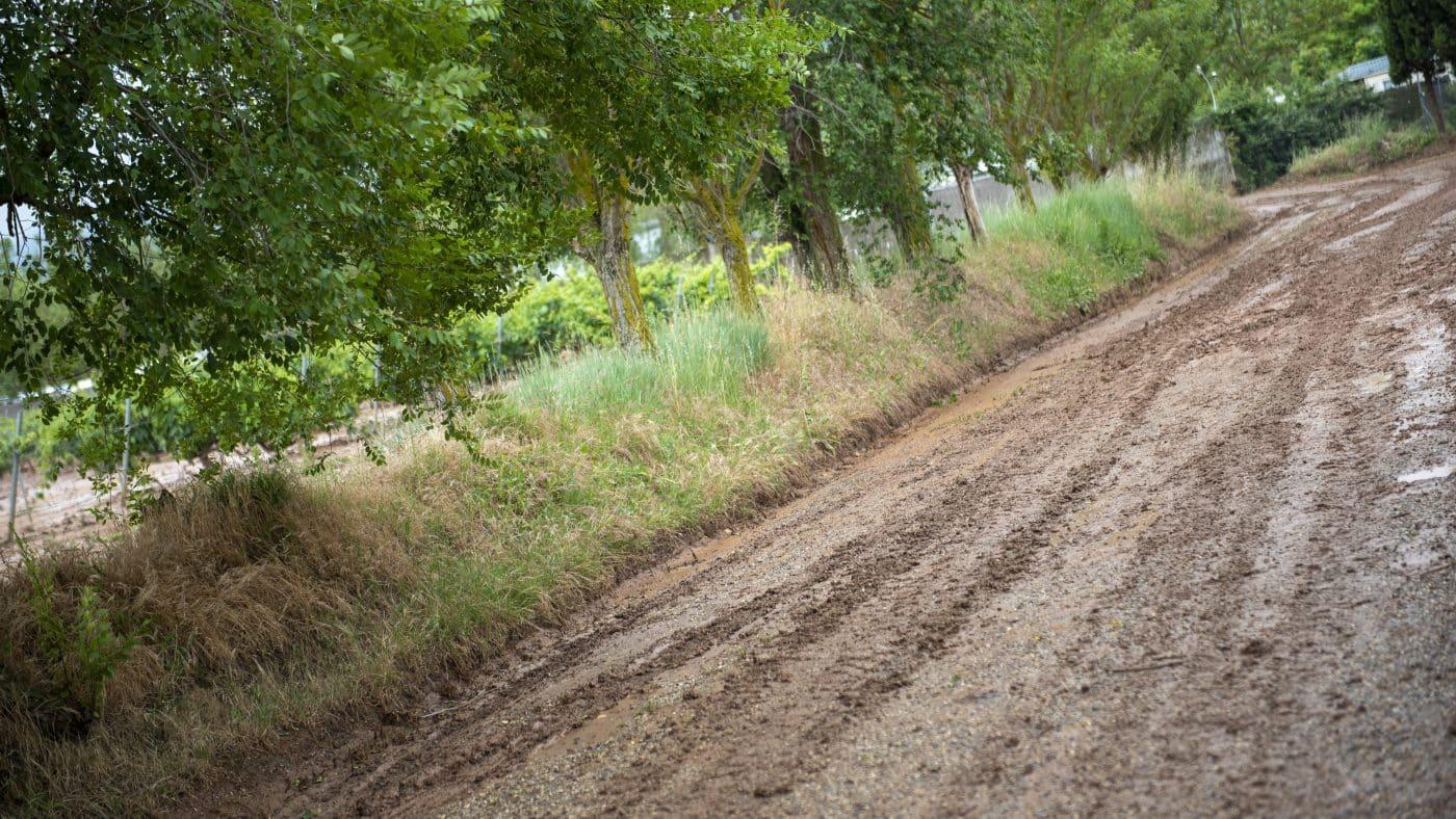 El Gobierno riojano realizará mejoras en Ollauri y Navarrete para favorecer la canalización tras las tormentas 20