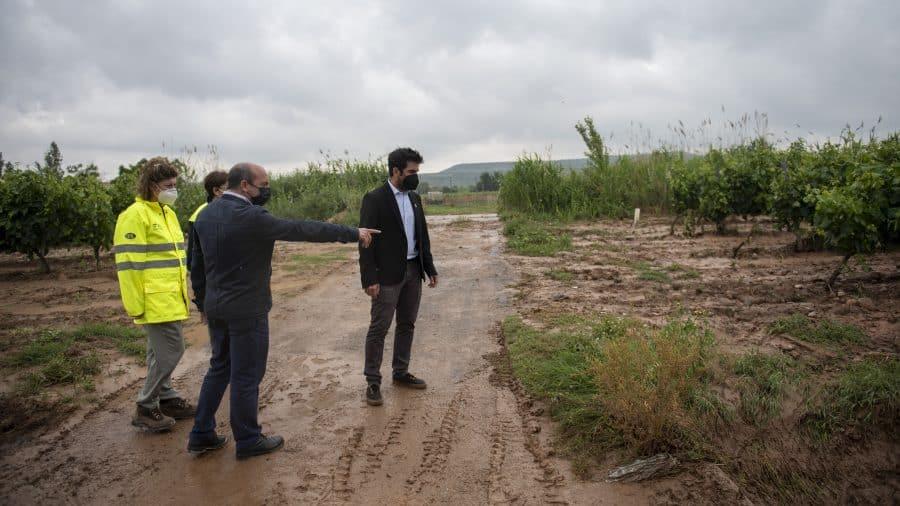 El Gobierno riojano realizará mejoras en Ollauri y Navarrete para favorecer la canalización tras las tormentas 33