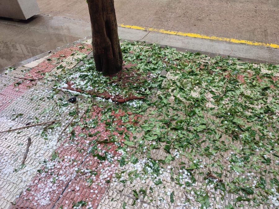 FOTOS: Intensa granizada en Santo Domingo de la Calzada 9