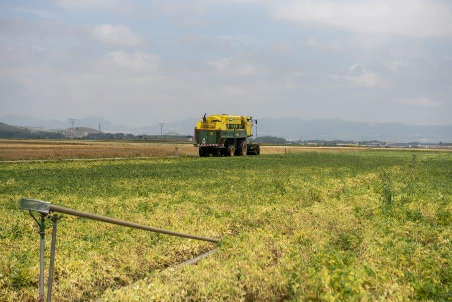 Hita conoce de primera mano los daños por las tormentas en los cultivos de Santo Domingo 8