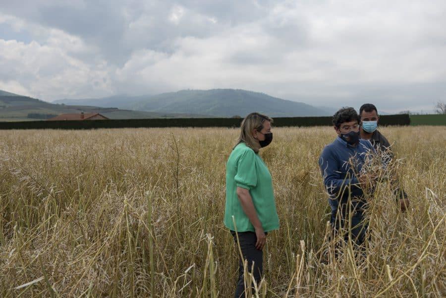 Hita conoce de primera mano los daños por las tormentas en los cultivos de Santo Domingo 7