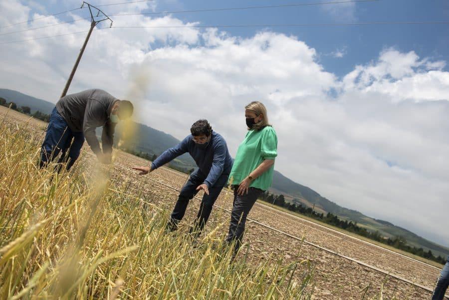 Hita conoce de primera mano los daños por las tormentas en los cultivos de Santo Domingo 5
