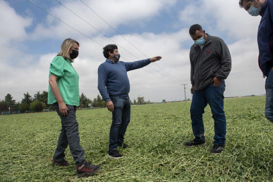 Hita conoce de primera mano los daños por las tormentas en los cultivos de Santo Domingo 2